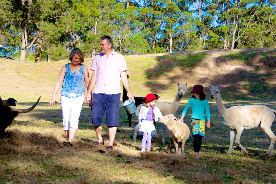 John and Rhonda and two children feeding the alpacas and sheep.