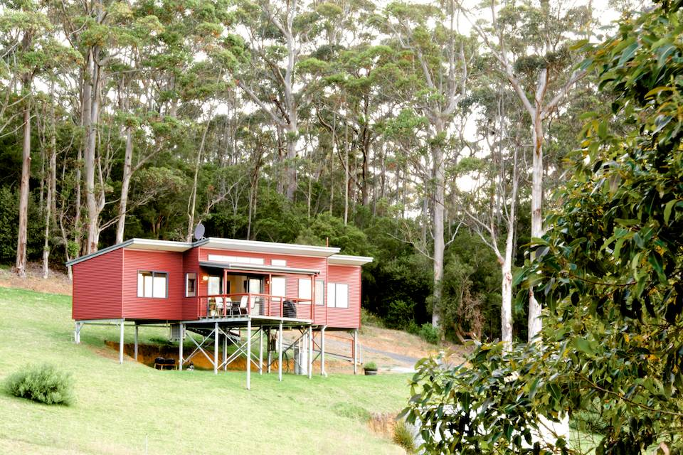 The outside of the Redgum chalet on the hillside with the karri forest behind.